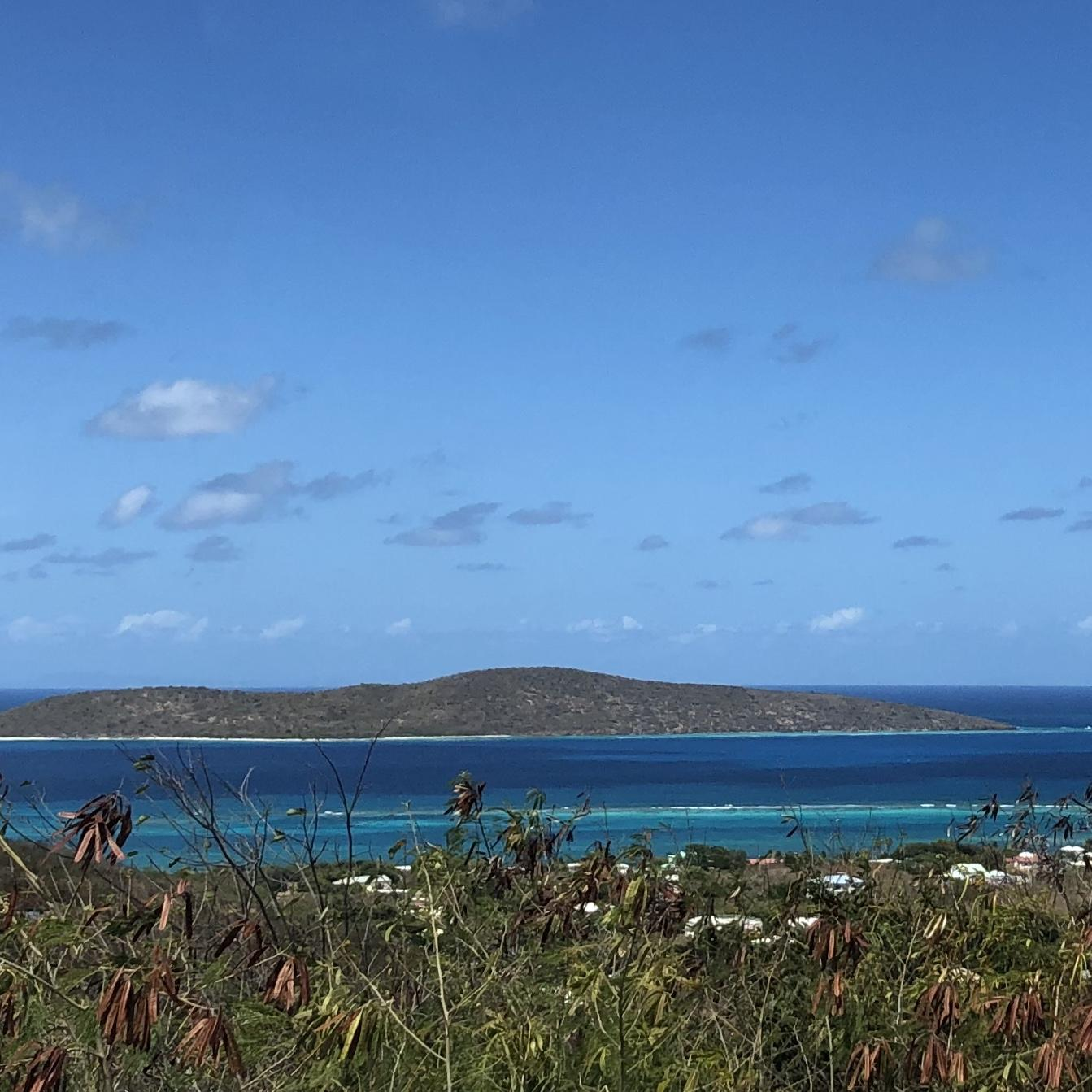 RE/MAX real estate, US Virgin Islands, Hope and Carlton Land Estate, Price Reduced  LotsAcres  Hope  Carton H EB