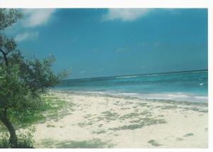 White sand beach. Great swimming