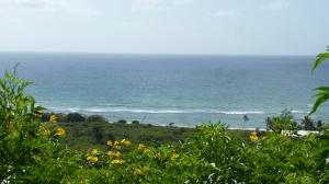 69 South Grapetree EB, St. Croix,