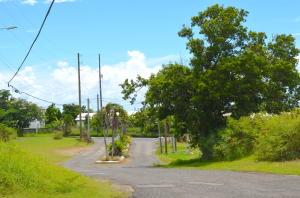 19 La Reine KI, St. Croix,
