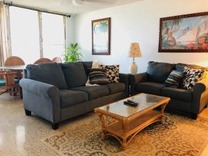 BRIGHT, COMFORTABLE LIVING ROOM WITH NEW 18K MITSUBISHI SPLIT AND PULL OUT COUCH