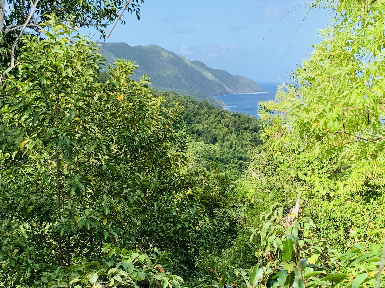 RE/MAX real estate, US Virgin Islands, Prosperity, Status Change  LotsAcres  Prosperity NB