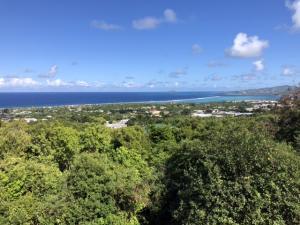 81-B La Grande Prince CO, St. Croix,