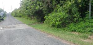 591 Barren Spot KI, St. Croix,