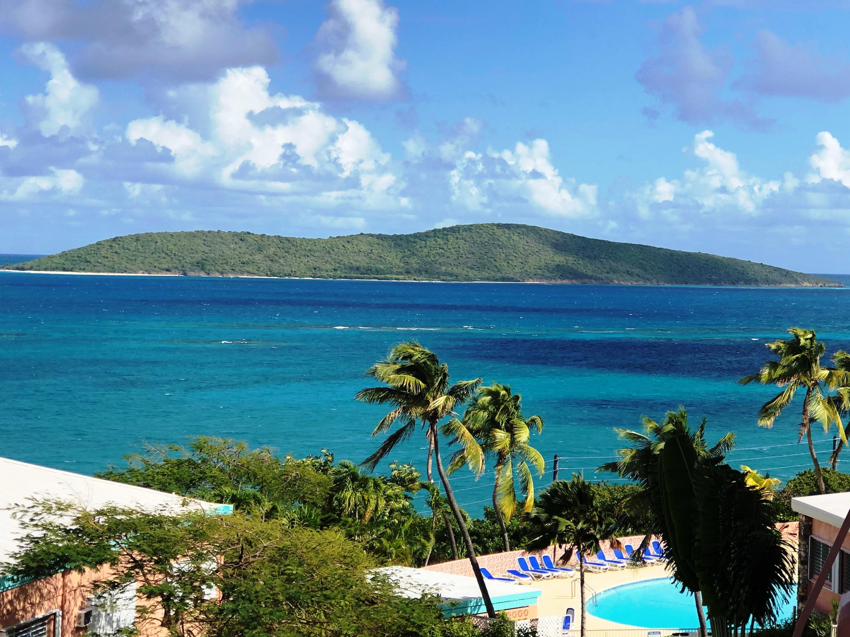 RE/MAX real estate, US Virgin Islands, Castle Coakley, Price Reduced  Condominiums  Coakley Bay EA