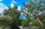 6- O Nazareth RH, St. Thomas,