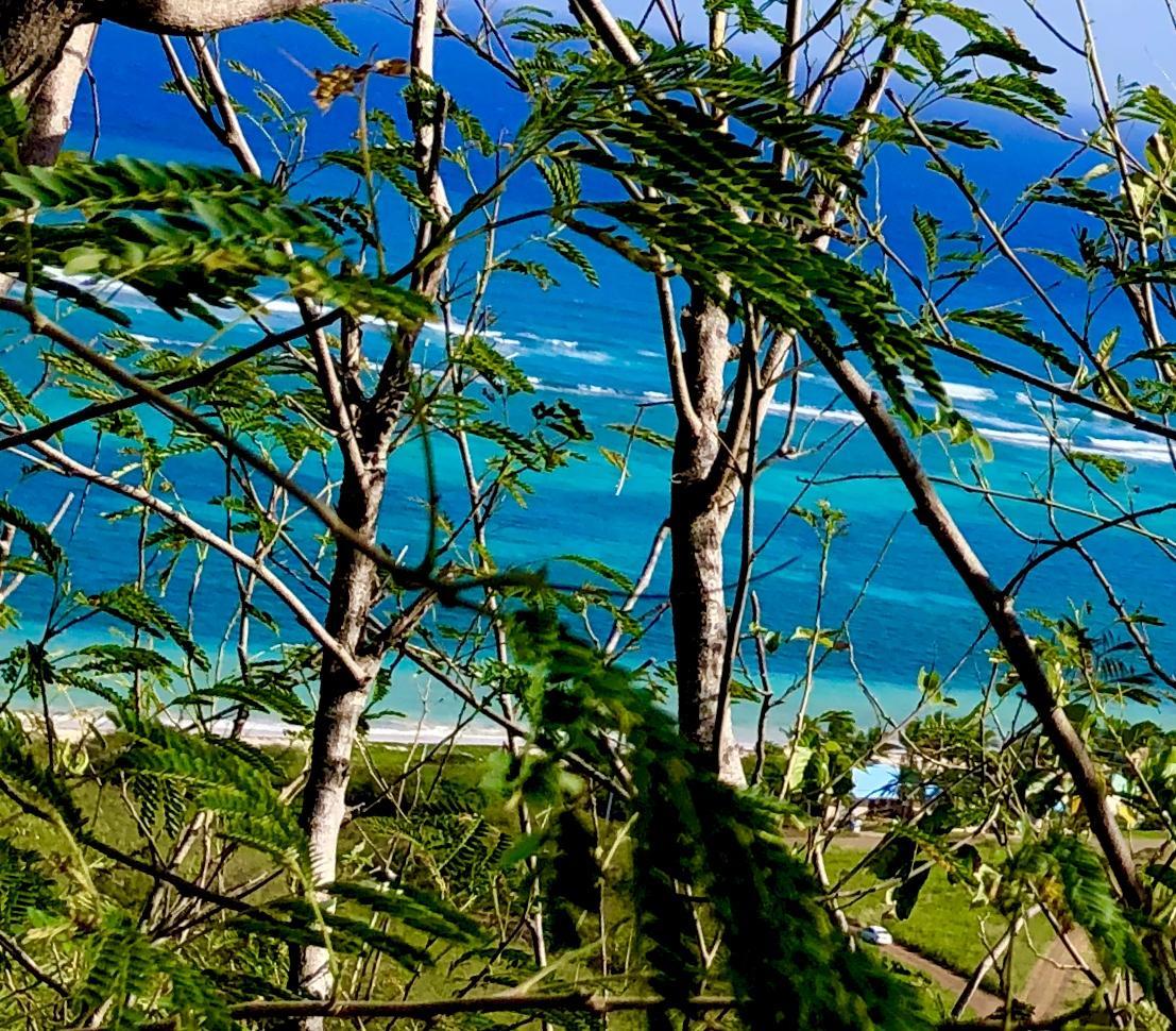 RE/MAX real estate, US Virgin Islands, Teagues Bay, Price Reduced  LotsAcres  Teagues Bay EB