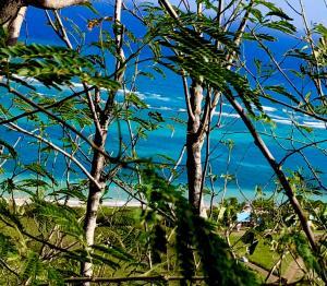 5M Teagues Bay EB, St. Croix,