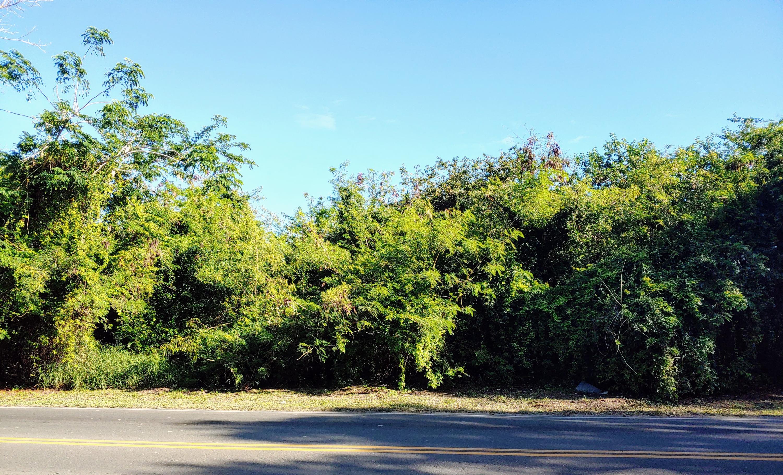 RE/MAX real estate, US Virgin Islands, Mount Pleasant, Status Change  LotsAcres  Mt. Pleasant PR