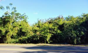 8-D Mt. Pleasant PR, St. Croix,