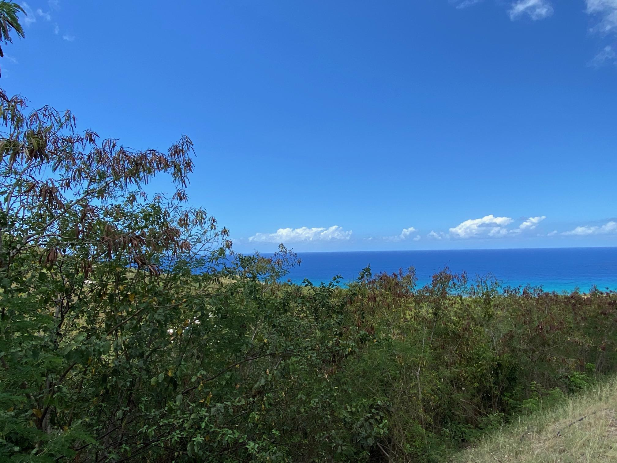 RE/MAX real estate, US Virgin Islands, Salt River Estate, Price Reduced  LotsAcres  Salt River NB