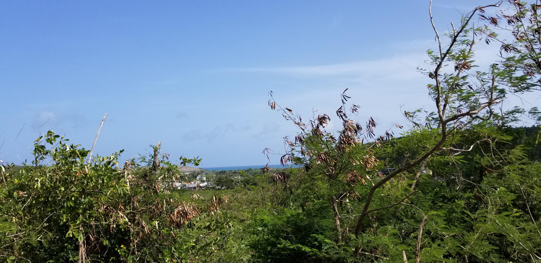 RE/MAX real estate, US Virgin Islands, Virgin Islands of the united States, New Listing  LotsAcres  V.I. Corp Lands PR