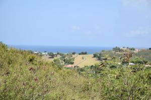 1B Boetzberg EA, St. Croix,