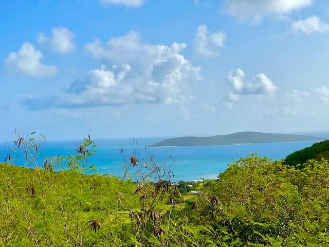 RE/MAX real estate, US Virgin Islands, Cotton Valley, Back on Market  LotsAcres  Cotton Valley EB