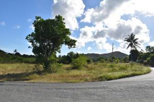 6 Grove Place PR, St. Croix,