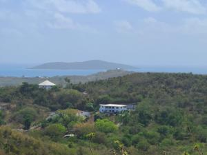 buck island views