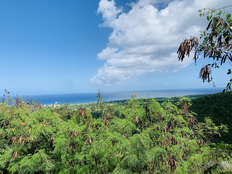 RE/MAX real estate, US Virgin Islands, La Grange, New Listing  LotsAcres  La Grange WE