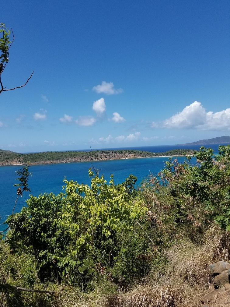 RE/MAX real estate, US Virgin Islands, Caret Bay Estate, New Listing  LotsAcres  Caret Bay LNS