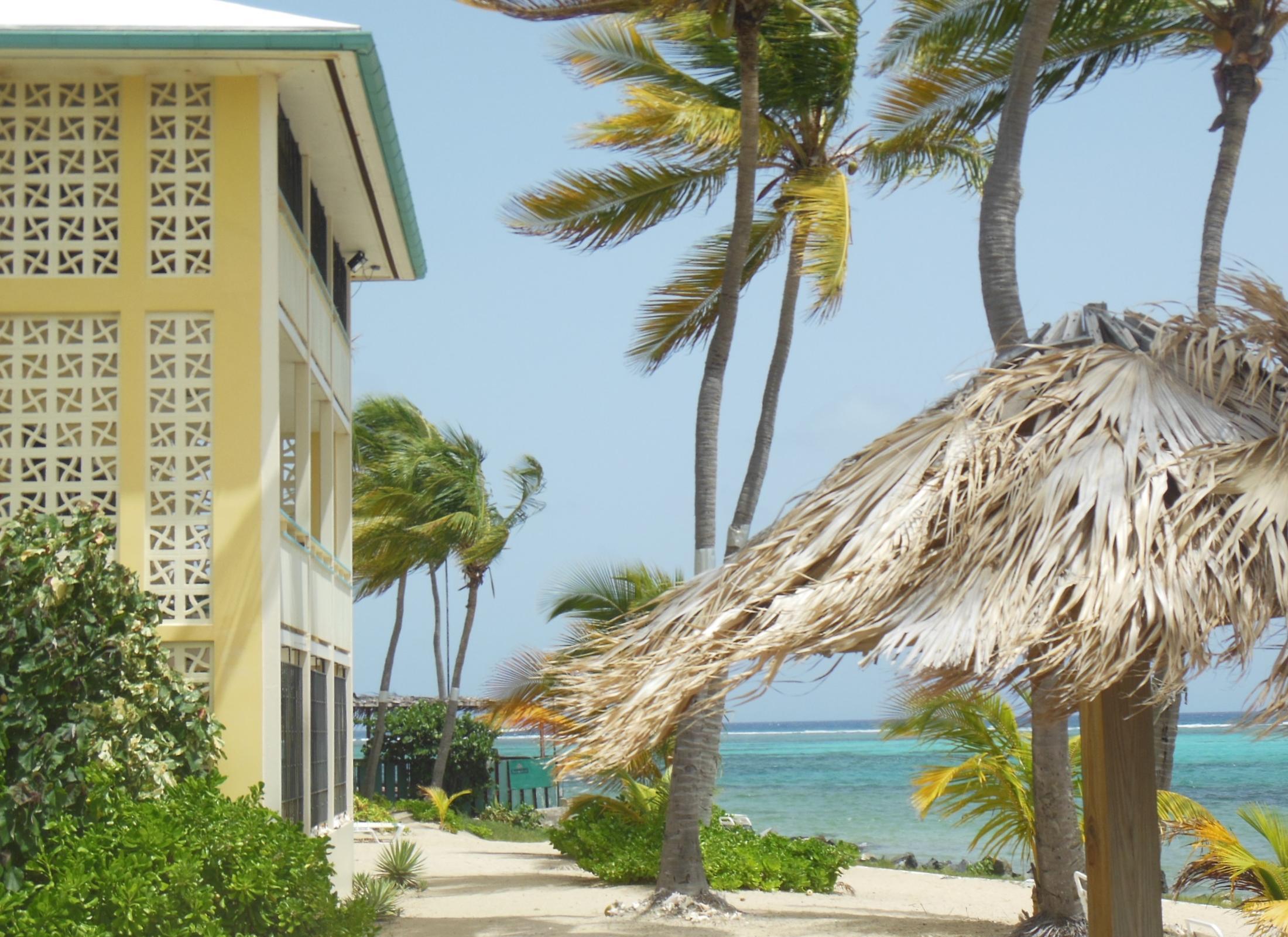 RE/MAX real estate, US Virgin Islands, Golden Rock Estate, Price Reduced  Condominiums  Golden Rock CO