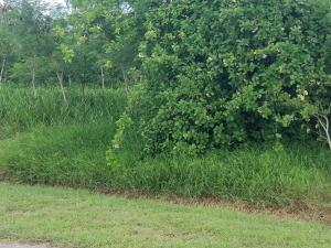 287 Enfield Green PR, St. Croix,