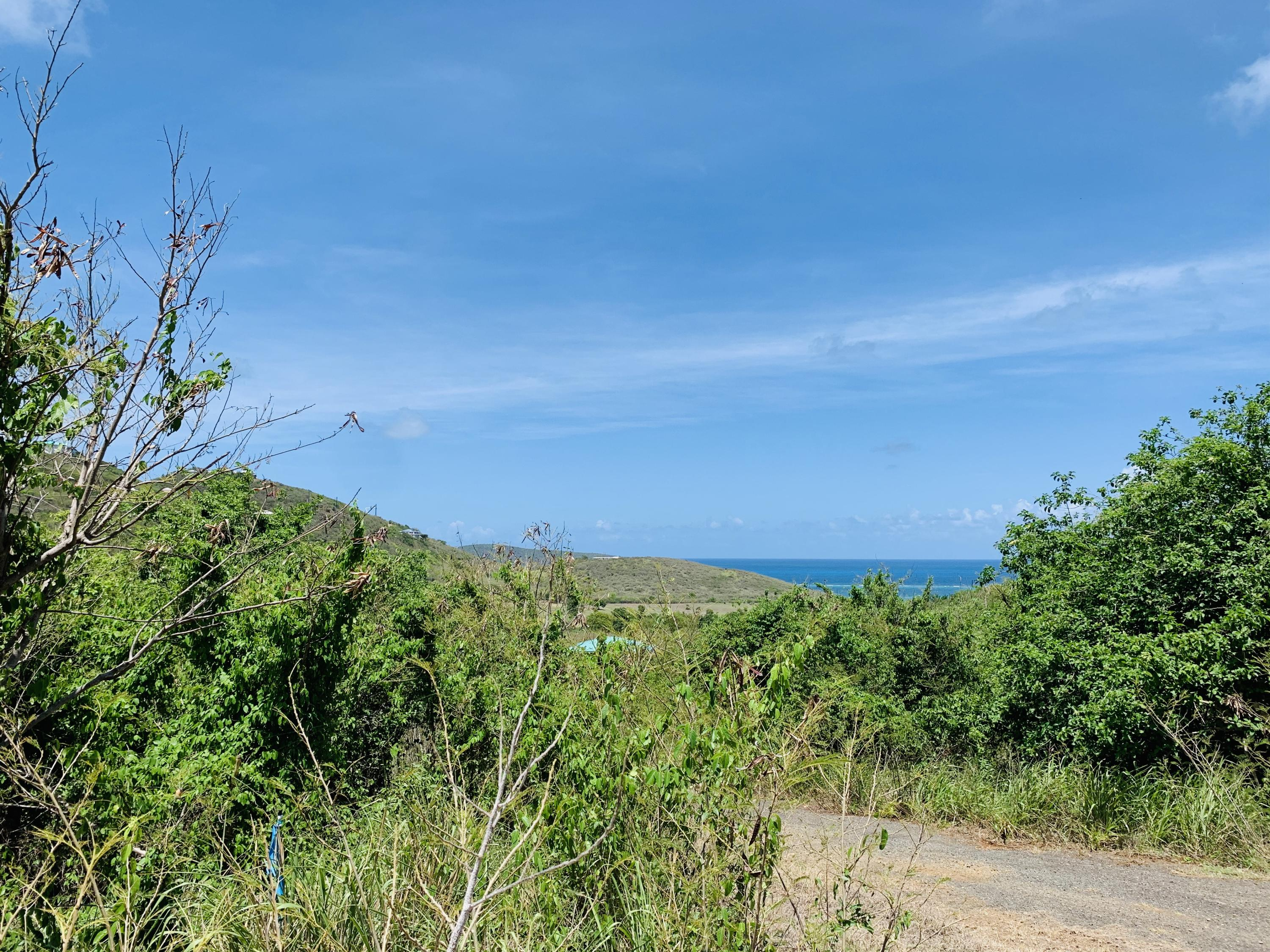 RE/MAX real estate, US Virgin Islands, Catharinas Hope, New Listing  LotsAcres  Catherines Hope EB