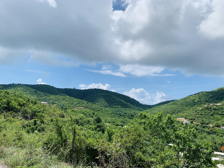 RE/MAX real estate, US Virgin Islands, Elizas Retreat Estate, New Listing  LotsAcres  Elizas Retreat EA
