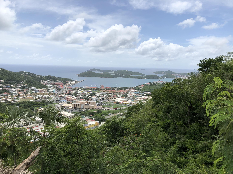 RE/MAX real estate, US Virgin Islands, Wintberg Estate, New Listing  LotsAcres  Wintberg GNS