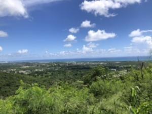 89 Union & Mt. Wash EA, St. Croix,