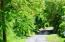 Lush wooded area of nice homes