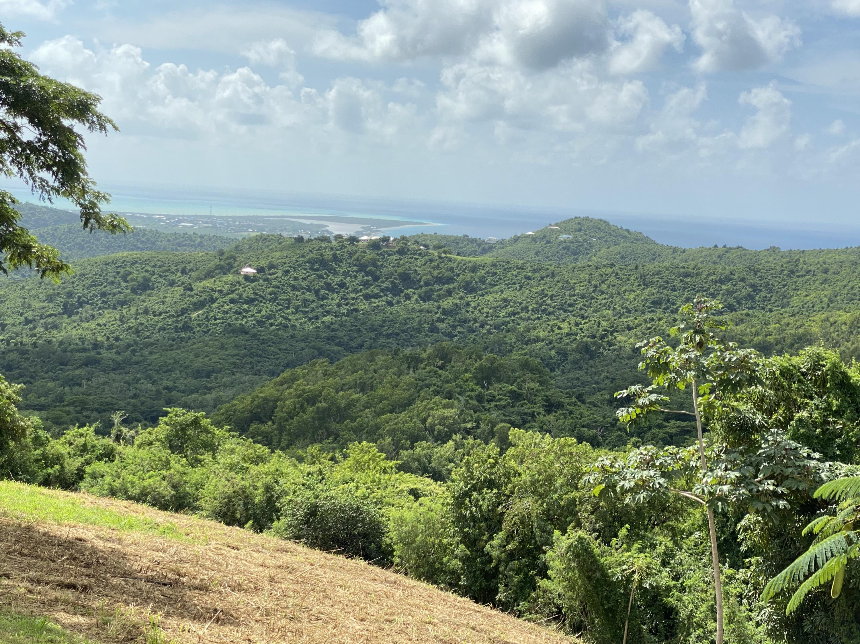 RE/MAX real estate, US Virgin Islands, Oxford, New Listing  LotsAcres  Oxford NA