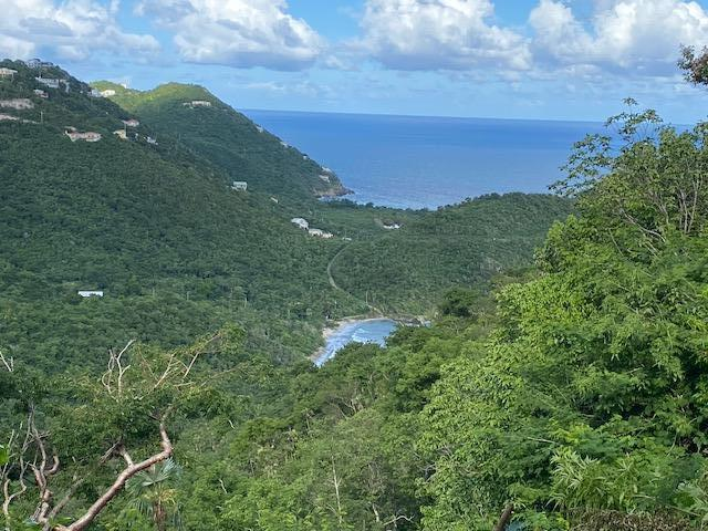 RE/MAX real estate, US Virgin Islands, Tabor and Harmony Estate, New Listing  LotsAcres  Tabor  Harmony EE