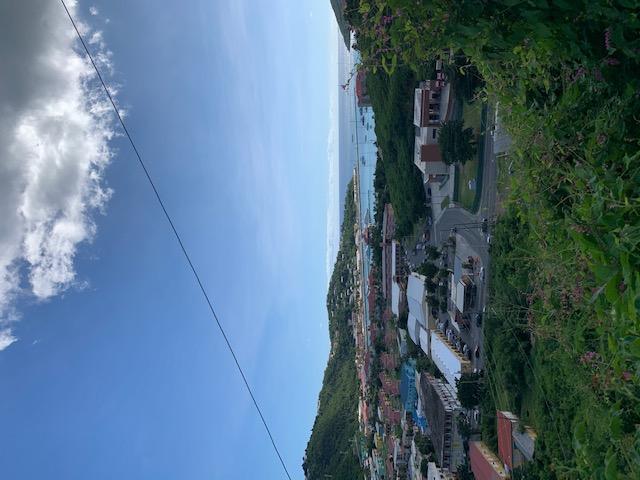 RE/MAX real estate, US Virgin Islands, Ross Estate, New Listing  LotsAcres  Ross NEW