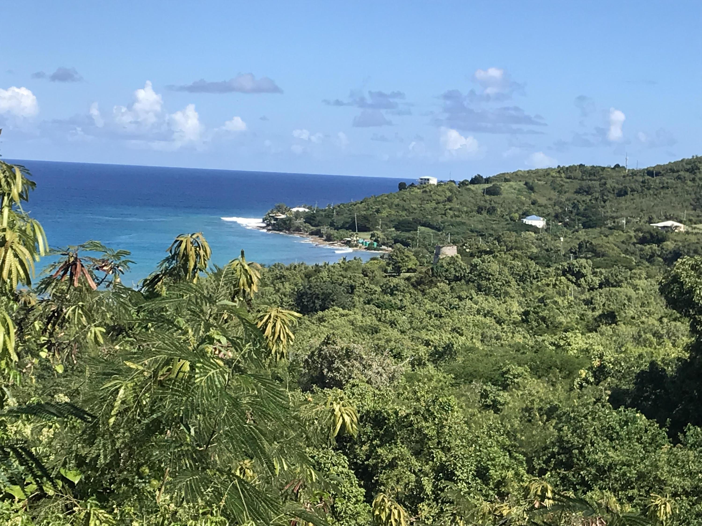 RE/MAX real estate, US Virgin Islands, North Side, New Listing  LotsAcres  North Star NB