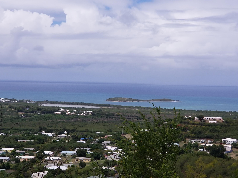 RE/MAX real estate, US Virgin Islands, union and Mount Washington Estate, New Listing  LotsAcres  Union  Mt. Wash EA