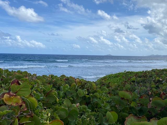 RE/MAX real estate, US Virgin Islands, Judith Fancy Estate, New Listing  LotsAcres  Judiths Fancy QU