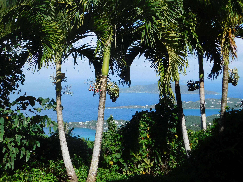 RE/MAX real estate, US Virgin Islands, Dorothea, New Listing  Res Rental  Dorothea LNS