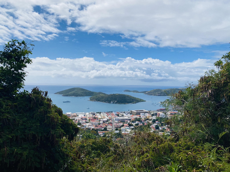 RE/MAX real estate, US Virgin Islands, Agnes Fancy Estate, New Listing  LotsAcres  Agnes Fancy GNS