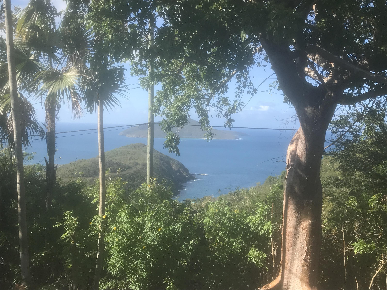 RE/MAX real estate, US Virgin Islands, Anna Retreat Estate, New Listing  Residential  Annas Retreat NEW