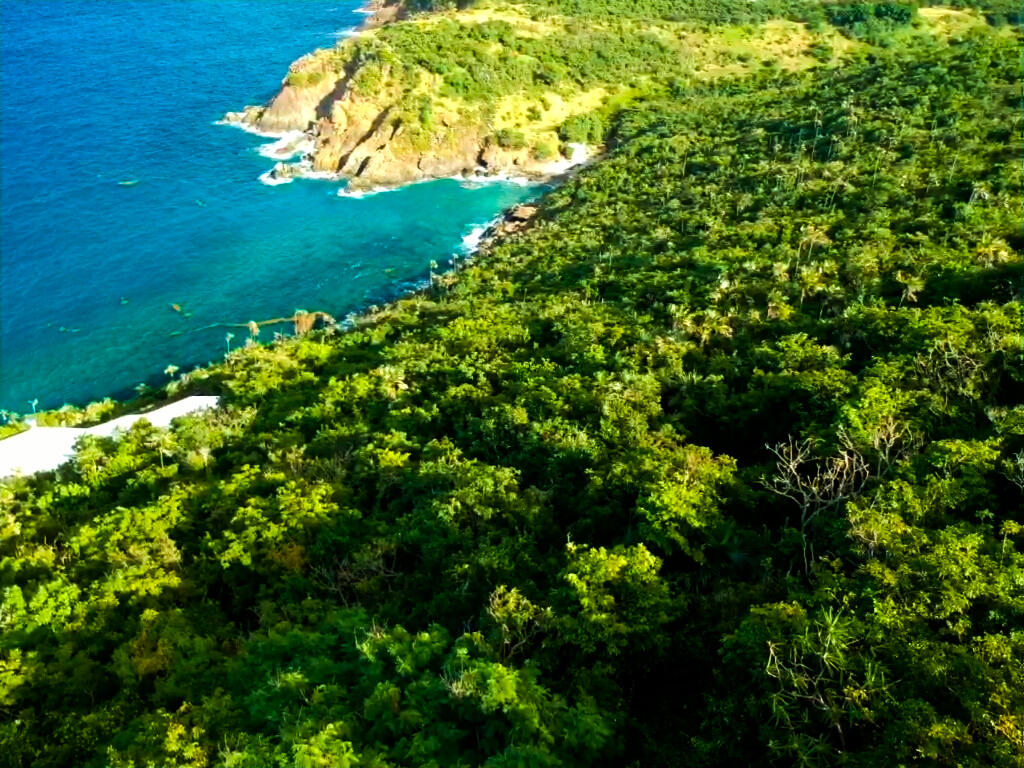 RE/MAX real estate, US Virgin Islands, Lovenlund, New Listing  Commercial  Lovenlund GNS