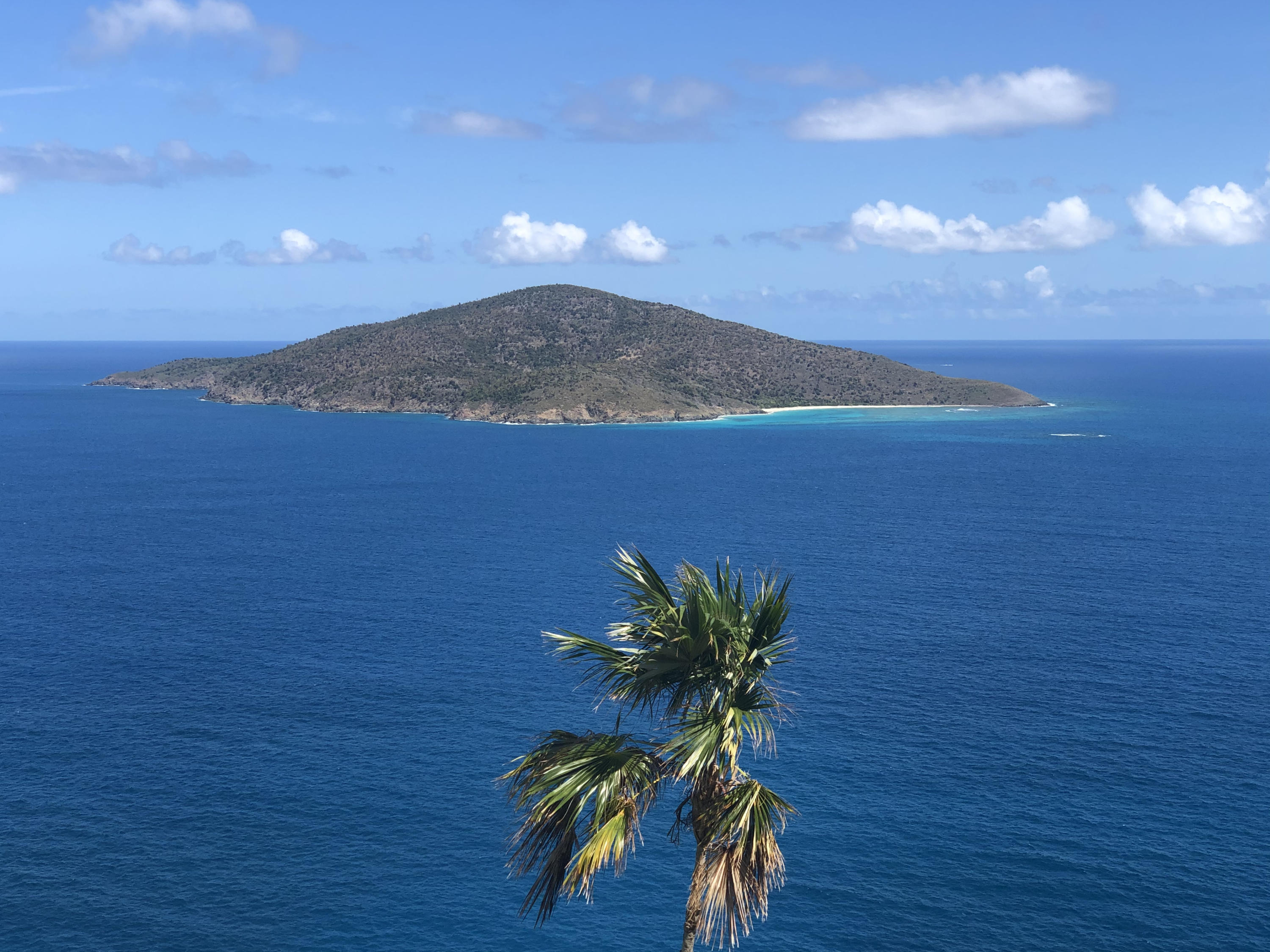 RE/MAX real estate, US Virgin Islands, Lovenlund, New Listing  Condominiums  Lovenlund GNS