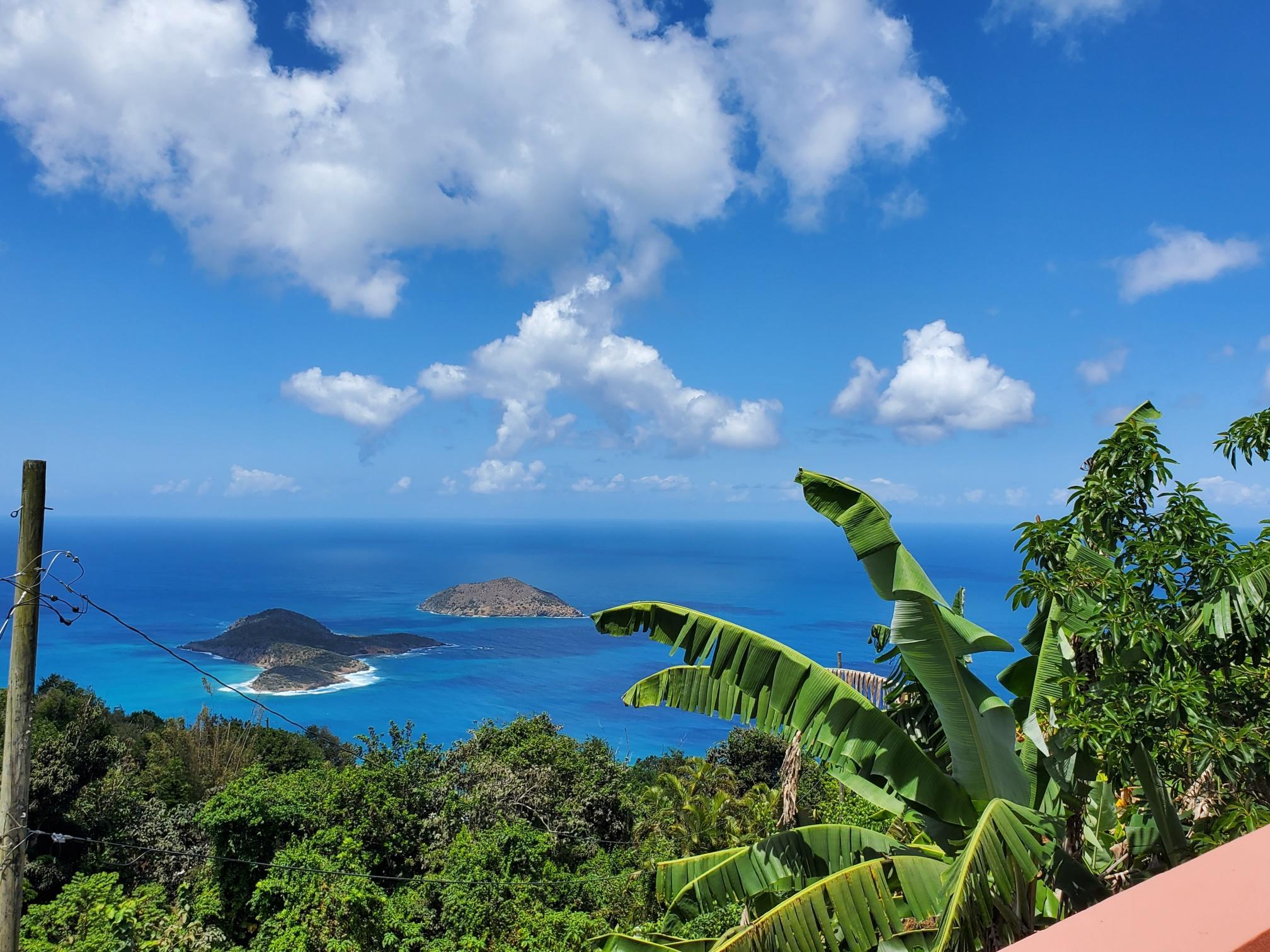 RE/MAX real estate, US Virgin Islands, St. Quaco & Zimmerman, New Listing  Res Rental  St. Peter LNS