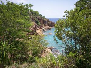 3 REM Water Island SS, St. Thomas,