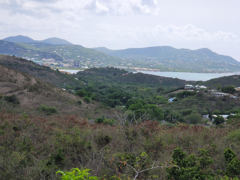 RE/MAX real estate, US Virgin Islands, Lowrys Hill, Back on Market  LotsAcres  Lowry Hill EA