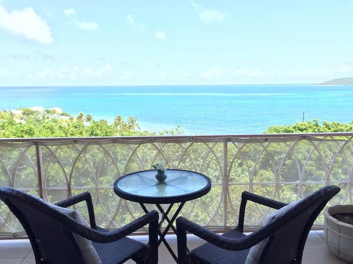 RE/MAX real estate, US Virgin Islands, Castle Coakley, New Listing  Condominiums  Coakley Bay EA