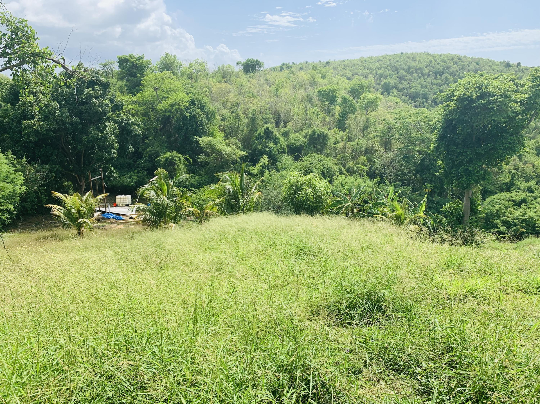 RE/MAX real estate, US Virgin Islands, Little La Grange Estate, New Listing  LotsAcres  Little La Grange WE