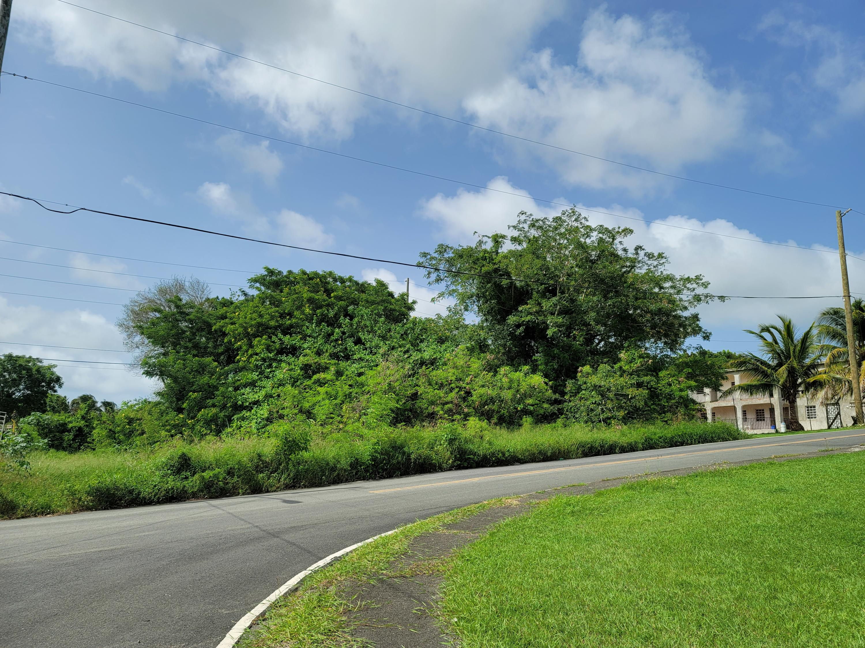 RE/MAX real estate, US Virgin Islands, Barren Spot Estate, New Listing  LotsAcres  Barren Spot QU