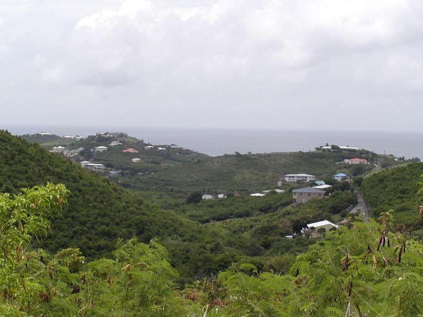 RE/MAX real estate, US Virgin Islands, Marienhoj Estate, New Listing  LotsAcres  Marienhoj EA