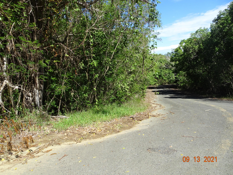 RE/MAX real estate, US Virgin Islands, Mount Pleasant, New Listing  LotsAcres  Pleasant Valley EB