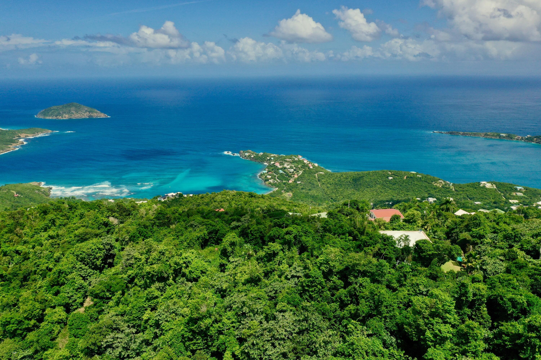 RE/MAX real estate, US Virgin Islands, St. Quaco & Zimmerman, New Listing  LotsAcres  St. Peter LNS