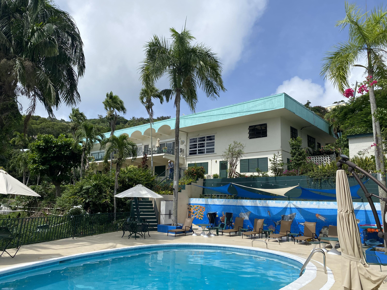 RE/MAX real estate, US Virgin Islands, Elizabeth Estate, New Listing  Residential  Elizabeth GNS